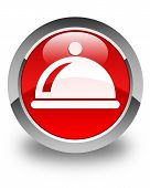 Food Dish Icon Glossy Red Round Button