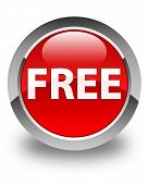 Free Glossy Red Round Button