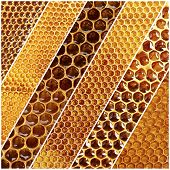 Honeycomb collage