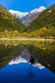 Mirror Lake At Jiuzhaigou Scenic