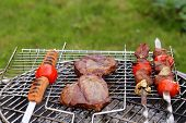 assortment barbecue meat (steak, shashalyk, sausages) picnic outdoors