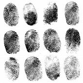 Set of fingerprints, vector illustration