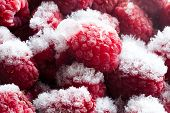 Frozen Berries. Closeup. Macro. Raspberries. Raspberry.