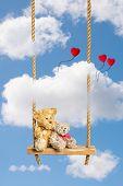 Two teddie bears sitting on rustic wooden rope swing