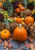 Autumn Ornament With Pumkins