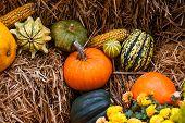 Pumpkin Decoration At Autumn