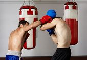 foto of kickboxing  - Two kickbox fighters training in the gym - JPG