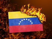 Flag Burning - Venezuela