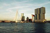 Rotterdam Skyline With Erasmus Bridge
