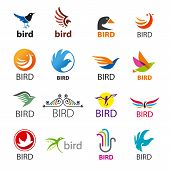 Big Set Of Vector Icons Birds