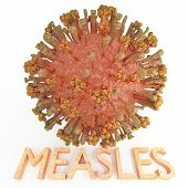 image of membrane  - A Measles Virus illustration with text name textured with skin sores - JPG