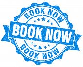 Book Now Blue Vintage Isolated Seal