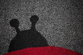 pic of linoleum  - The silhouette of a ladybug on linoleum - JPG