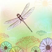 stock photo of dragonflies  - Flower Background Sketch With Dragonfly - JPG