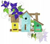 pic of nesting box  - Nesting box witn violet flowers - JPG