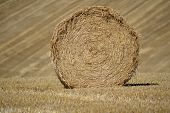 picture of hay bale  - Hay Bale Round Against Stripes in a field beyond - JPG