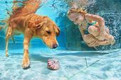 Child With Dog Dive Underwater In Swimming Pool poster