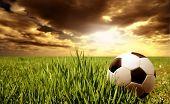 a soccer ball in a grass field