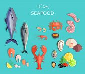 Постер, плакат: Seafood Set Design Flat Fish and Crab