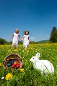 stock photo of easter eggs bunny  - Easter bunny on a beautiful spring meadow with dandelions in front of a basket with Easter eggs - JPG