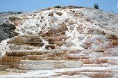 Geysir auf Mammoth hot springs.