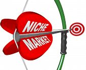 A bow and arrow with the words Niche Market and aiming at a red bulls-eye target, illustrating the p