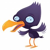 picture of wacky  - Vector cartoon illustration of a wacky squawking bird flapping his wings - JPG
