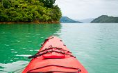Red touring kayak in green waters of the Marlborough Sounds, New Zealand