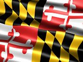 Bandera del estado de Maryland