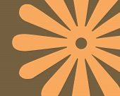 Retro Orange And Brown Flower Background