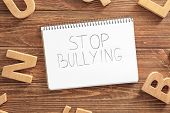 Notebook with text Stop bullying on wooden background, top view poster