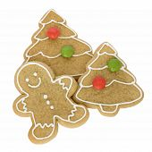 Gingerbread Man With Christmas Cookies