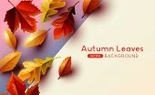 Autumn Seasonal Background Frame With Falling Autumn Leaves And Room For Text. Vector Illustration poster