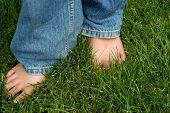 Bare Foot In Thre Grass