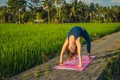 Young Woman Practice Yoga Outdoor In Rice Fields In The Morning During Wellness Retreat In Bali poster