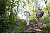 Happy active seniors enjoying trekking trip in the forest while standing on hill and lookng at natur poster