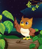 stock photo of hollow log  - Illustration of an owl flying at night - JPG