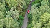 Aerial Aerial View Of A Red Car Driving On Country Road At Day. Aerial Drone View Flying Over Forest poster