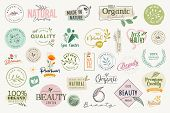 Set Of Signs And Elements For Beauty, Natural And Organic Products, Cosmetics, Spa And Wellness. Vec poster