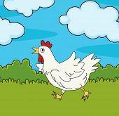 Ilustración de pollo en campo
