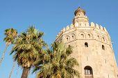 Torre Del Oro o la torre del oro en Sevilla