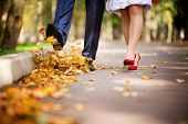The Couple Walks Through The Park In The Autumn And Throws Their Fallen Leaves Into The Air With The poster