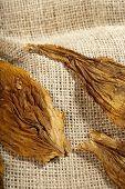 Macro Of A Tobacco Leaf
