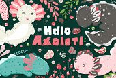 Cute Summer Kawaii Axolotl, Baby Amphibian Drawing. Poster With Funny Lizards. Flat Style Design. Am poster