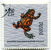 POLAND - CIRCA 1963: Polish stamp shows Bombina bombina (Fire-bellied Toad), series devoted to repti