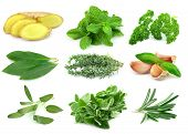 Collage Of Green And Juice Spice