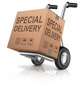 special delivery important shipment special package sending express shipping hand truck cardboard box isolated and with text