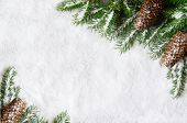 Christmas Background, Green Pine Branches, Cones On Snow Background. Creative Composition With Borde poster