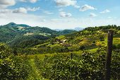 Green Valley Nature Landscape. Mountain Layers Landscape. Summer In Mountain Forest Landscape. Fores poster