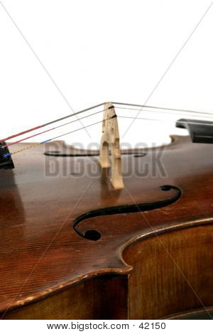 Isolated Cello poster